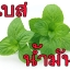 OBMT กลิ่นมิ้นท์ (น้ำมัน) Mint Flavor (Oil Based) thumbnail 1