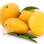 MG กลิ่นมะม่วง Mango Flavor thumbnail 1
